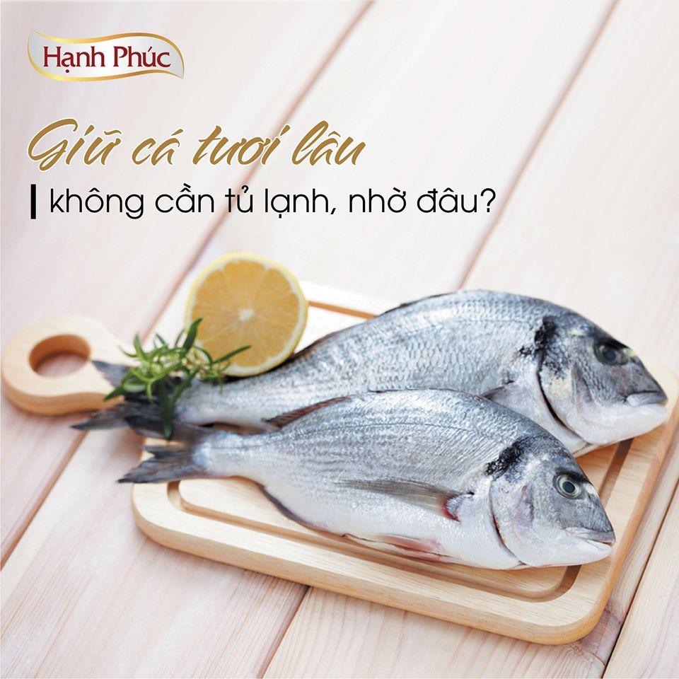 5 mẹo nhỏ dưới đây giúp bạn bảo quản cá tươi lâu hơn mà không cần tủ lạnh!