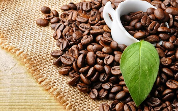 Huyền Thoại Việt – Lời chào năm mới cùng cà phê ngon!