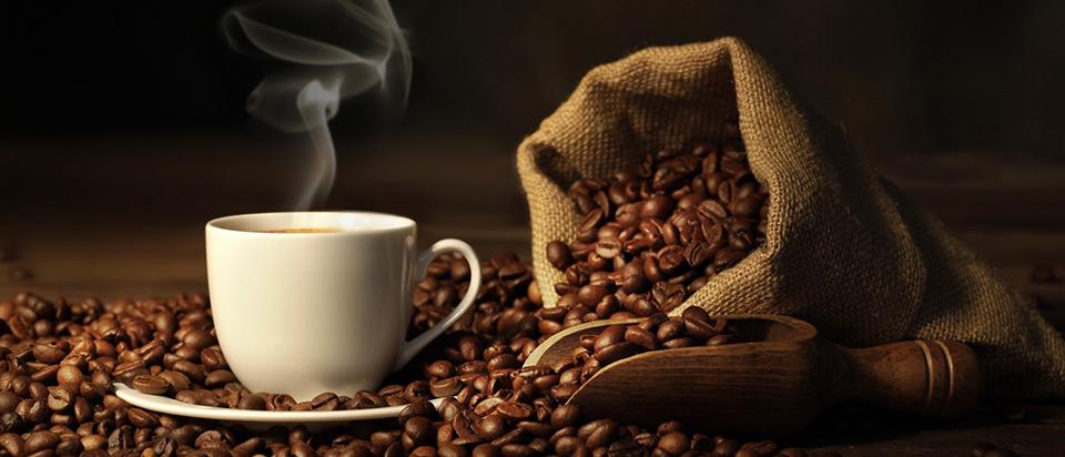 5 yếu tố giúp nhận biết ly cà phê chồn nguyên chất?
