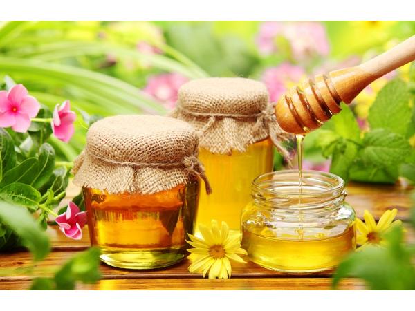 Tác dụng mật ong tự nhiên - Mật ong hoa cafe Gia Lai (GalaHoney) 500 ml